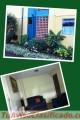 Apartamentos ventas y alquiler