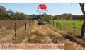 2 LOTES x 14 MILLONES 10 000 m2 LEPANTO