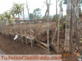 Venta de lote en El Común de Esquipulas, Palmares, Alajuela
