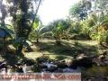 DE OPORTUNIDAD!! Hermosa Quinta con Rancho (negociable)