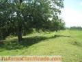Finca de 40 hectáreas en Bataan de Limón.