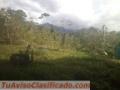 ganga-27-hectareas-2-200-000-cada-una-5.jpg